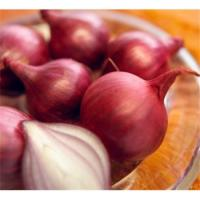 Buy cheap Onion Extract  1%Quercetin;10:1 from wholesalers