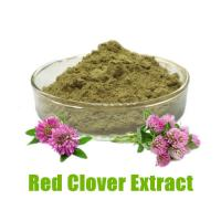 Buy cheap Red Clover Extract-100% Natural- Improve Health from wholesalers