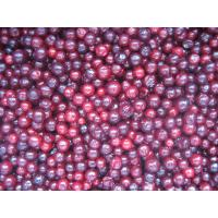 Buy cheap Frozen organic  Lingonberry A grade from wholesalers