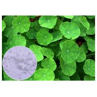 Buy cheap Skin Scars Gotu Kola Leaf Powder , Centella Asiatica Leaf Extract CAS 16830 15 2 from wholesalers