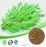 Buy cheap rosemary extract (plant extract) rosemary extract 20% rosmarinic acid rosemary ext from wholesalers