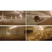 Buy cheap Cooling pad for poultry equipment - Detailed info for Cooling pad for house from wholesalers