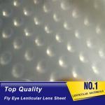 Buy cheap latest flying 3d lenses fly-eye plastic sheet film fly eye lenticular sheet from wholesalers