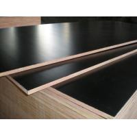 Buy cheap film faced plywood/marine plywood/construction plywood with competitive price from wholesalers