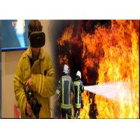 Buy cheap Professional Virtual Reality Training Systems 3 Dimensional With Visual Fire Scene from wholesalers