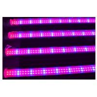 Buy cheap Full spectrum 18w T8 led grow light for plant growth , flower and vegetable from wholesalers
