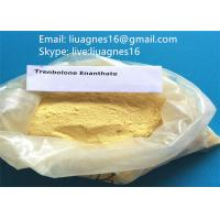 Buy cheap Trenbolone Enanthate Anabolic Steroids Parabolan for Bodybuilding CAS 10161-33-8 from wholesalers