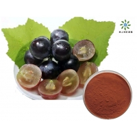 Buy cheap OPC 95% Proanthocyanidins Grape Seed Herb Extract Powder Boost Immune System And Reduce Inflammation product