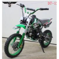 Buy cheap D7-12e 110cc Electric and Kick Start Dirt Bike from wholesalers