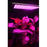 Buy cheap Energy Efficiency Hydroponic Led Grow Lights For Indoor Gardening Alluminum Material from wholesalers