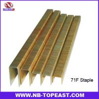 Buy cheap 71F Staples Series for Pneumatic Gun 4mm,6mm,8mm,10mm,12mm,14mm,16mm from wholesalers