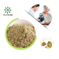 Buy cheap Pure Pumpkin Seed Protein Vegetable Extract Powder For Vegetarian product