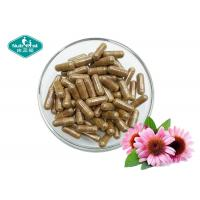 Buy cheap Echinacea Purpurea 400mg Capsules Helps Fight Colds & Upper Respiratory Tract Infections product