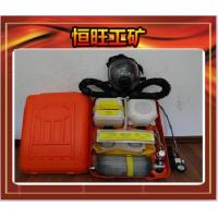 Buy cheap HYZ-2 Isolation type positive pressure oxygen respirator from wholesalers