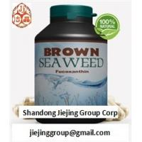 Buy cheap natural brown seaweed wakame extract fucoxanthin 1%, 5%, 10% 20% powder ingredients from wholesalers
