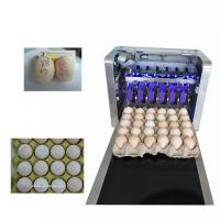 Eggs Batch Code Food Inkjet Printer , Continuous Laser Marking Machine