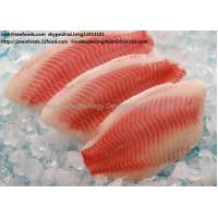Buy cheap tilapia Fillet frozen from wholesalers