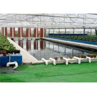 Buy cheap Plastic Film Hydroponic Greenhouse Strong Ventilation Ability Convenient To Use from wholesalers