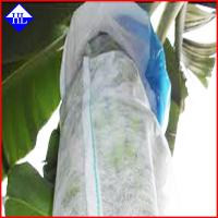 Non Woven Spunbond Polypropylene Fabric For Agriculture Fruit Covering UV Protection