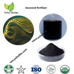 Buy cheap best seaweed fertilizer,liquid kelp organic seaweed fertilizer, seaweed base fertilizer from wholesalers