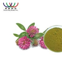 Buy cheap Water Soluble Red Clover Flower Extract Pharmaceutical Grade Treatment For Indigestion from wholesalers