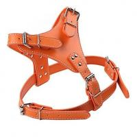 Buy cheap dog s collar martingale collars rolled leather dog collar spiked dog collars from wholesalers