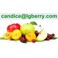 Buy cheap Formulation blend juice powder instant fruit juice powder from wholesalers