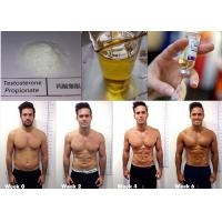 Buy cheap Testosterone Propionate Testosterone Steroid 57-85-2 Yellow Oil Injection 100mg/ml from wholesalers