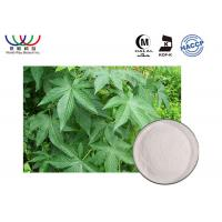 Buy cheap 100 % Natural Sweetleaf Stevia Extract , Water Soluble Stevia Extract Powder from wholesalers