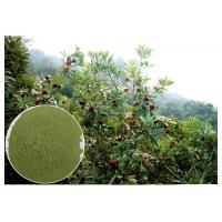 Buy cheap Anti-diabetic anti-oxidation myricetin Bayberry Bark Extract from wholesalers