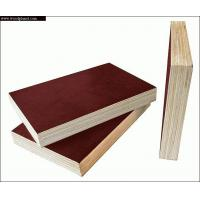 Buy cheap film faced plywood   email:weipeizhi@hotmail.com from wholesalers