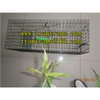 Buy cheap Effective Pigeon Trap for Pigeon Control from wholesalers