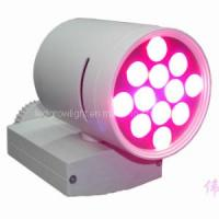 Buy cheap 12W LED Tracking Grow Light for Plant Wall (WL-BF504A8101) from wholesalers