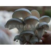 Buy cheap Pleurotus ostreatus extract 10%-50%,GMP/HACCPcertificate,edible and medicinal mushroom from wholesalers