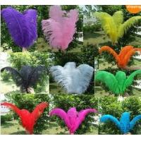 Buy cheap Trim Ostrich Fringe fluffy ostrich plumes feather centerpieces wedding Clothing decoration product