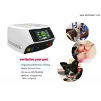 Buy cheap 30W / 60W Veterinary Laser Equipment For Dogs with 980nm Wavelength from wholesalers