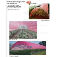 Buy cheap 100% Biodegradable mulch, biological degradation processes, fruit box,flower pot,jute cloth,cultivating bag,jute net,net from wholesalers
