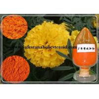 Buy cheap Natural Marigold Extract Marigold P.E. CAS 127-40-2 for Eyesight Protection from wholesalers