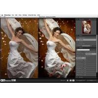 Buy cheap Image editing in adobe photoshop vector art wedding portrit from wholesalers