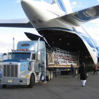 Buy cheap Cargo Delivery Amazon FBA Service Flexible Global Freight Services from wholesalers