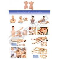 Buy cheap Clinical and Nursing Skill Training Model from wholesalers