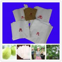 Buy cheap Protection bag for guava Skype yu.zhang951 from wholesalers