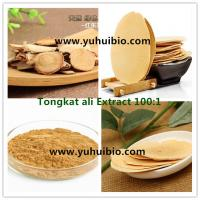 Buy cheap Eurycoma longifolia jack Extract for sex improvement, Eurycoma longifolia jack powder for Sexual dysfunction from wholesalers
