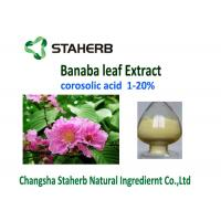 Buy cheap Corosolic Acid Weight Losing Raw Materials , Banaba Leaf Extract Powder HPLC Test from wholesalers