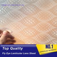 China PLASTIC LENTICULAR best selling 3d fly printing film 360 fly eye sheet fly eye lenticular film on sale