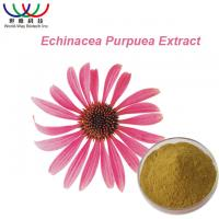 Buy cheap Polyphenol Natural Herbal Extracts , Echinacea Purpurea Root Extract Powder from wholesalers