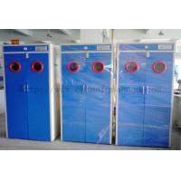 China Compressed Gas Cabients / Storage Gas Cabints Supplier / Gas Cylinder Cabinet Exporter on sale