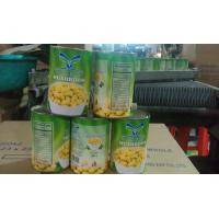 Buy cheap Factory Price NEW SEASON FORTOP BRAND Canned Mushroom Whole in Brine N.W.800G,D.W.400G from wholesalers