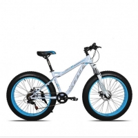 Buy cheap Disc Brakes Aluminum 26 Inch  Kids Fat Tire Bike from wholesalers
