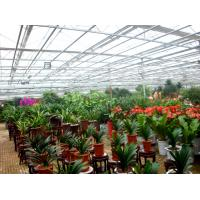 Buy cheap Flower Exhibition Multi Span Greenhouse , High Output Polycarbonate Sheet Greenhouse from wholesalers